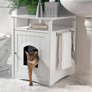 9-25-kitty-washroom-1