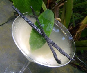 vanilla-cloud-cocktail-1023x866
